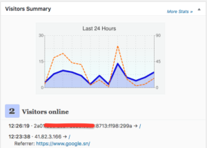 IPv6 Visitors
