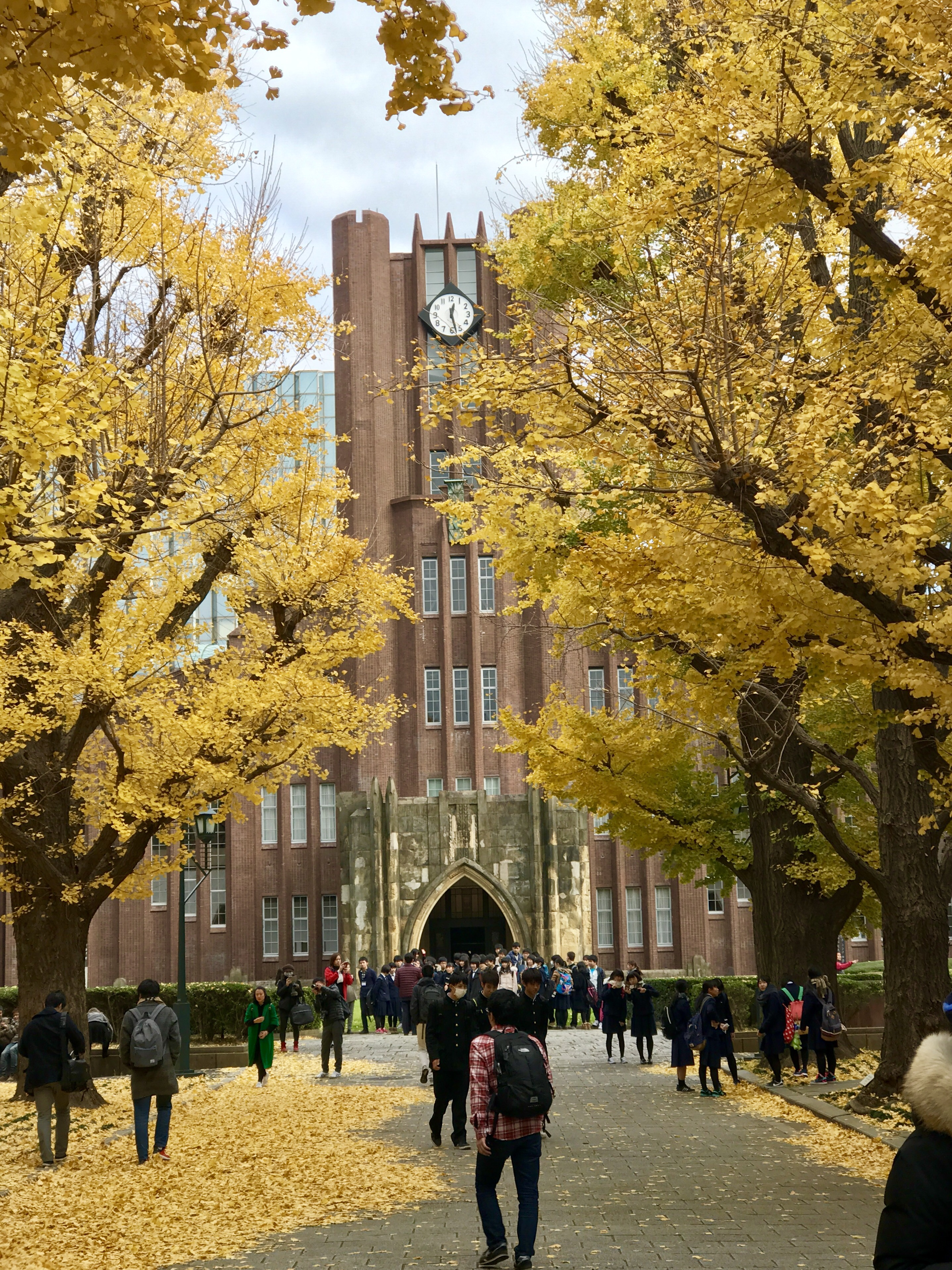 Image result for tokyo university